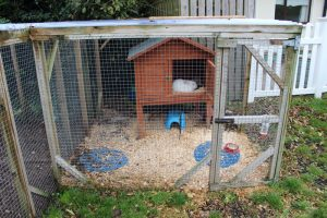 montessori mullingar garden play area with rabbit hutch